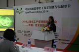 西卡中国产品管理及技术服务经理王鹏飞女士