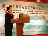 上海华谊(集团)公司副总裁沈丽萍女士演讲
